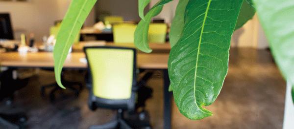 事業拡大に伴うオフィス移転のお知らせ